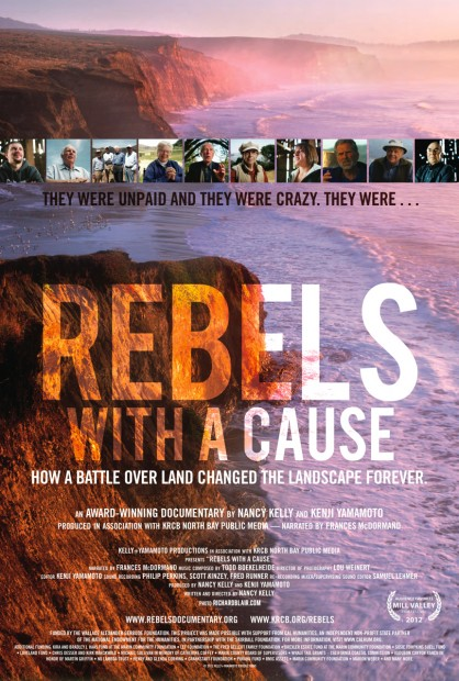 Rebels with a Cause poster