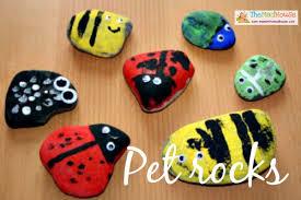 pet rocks 10