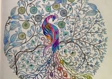 zen coloring