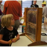Uncle Jer's Traveling Bee Show